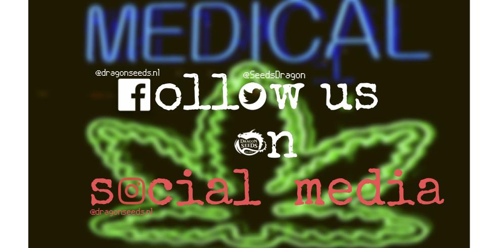Social media_new